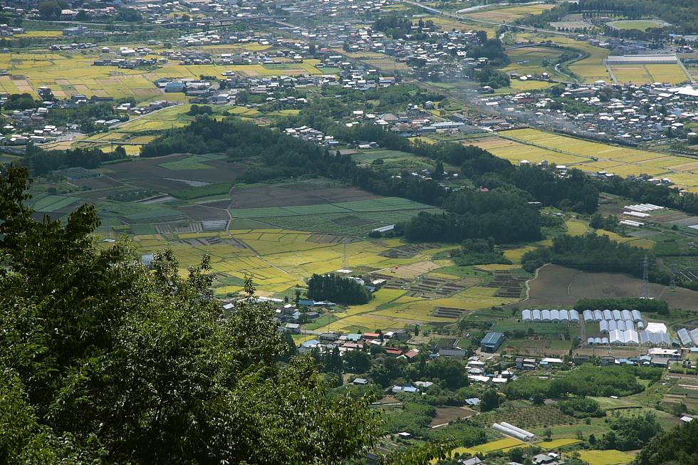 緑色 - 2011年初秋・上越線 -_b0190710_042975.jpg