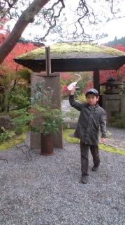 京都 大原_d0116910_15493910.jpg