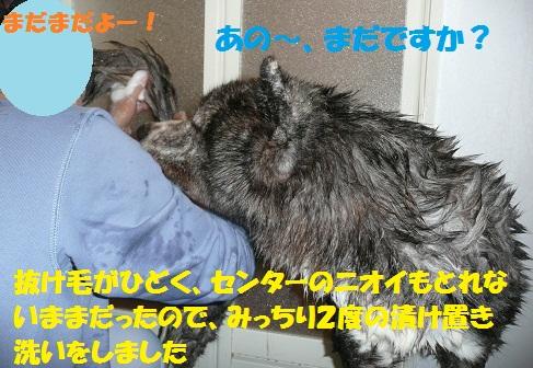 f0121712_70343.jpg