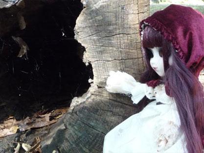 2011 創作人形科マスターコース 『お人形のためのデジカメ写真講座ー野外編ー』_b0107314_11192817.jpg