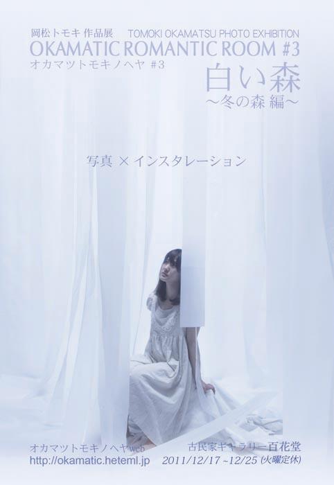 12月17日〜25日 『白い森 ~冬の森編~』_f0159642_020088.jpg