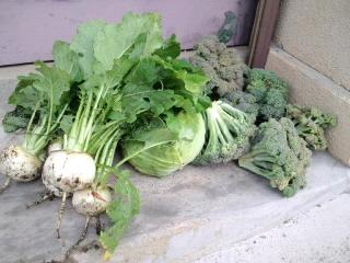 地元野菜は安全です。_d0027486_13203554.jpg