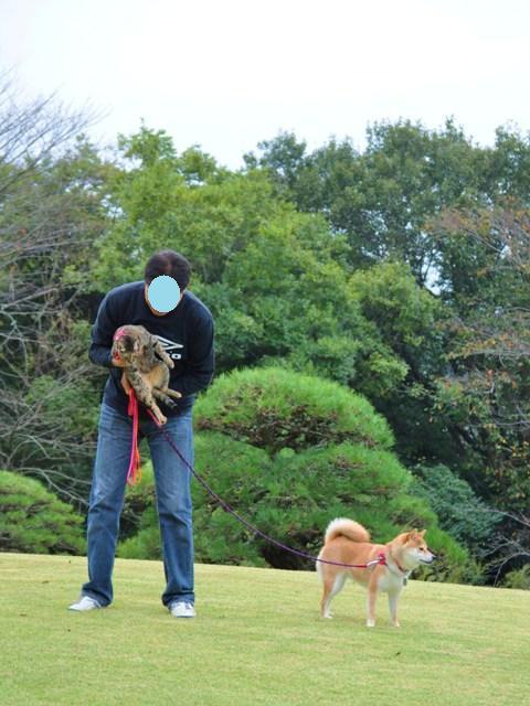 日本庭園_a0126590_7463250.jpg