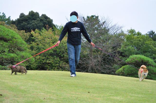 日本庭園_a0126590_7491169.jpg