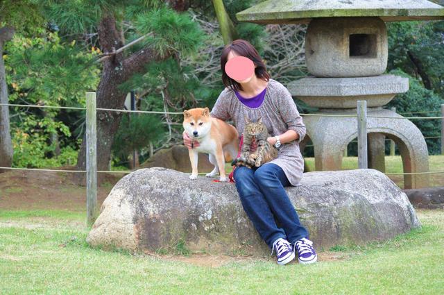 日本庭園_a0126590_756764.jpg