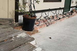 お茶の香ロード 2011_c0127494_1129122.jpg