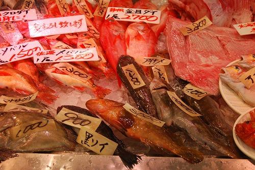 興奮!日本海鮮魚センター_c0124100_2339290.jpg