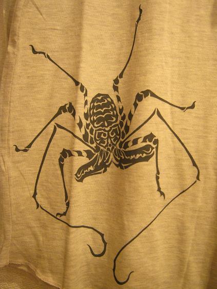 もぞもぞ 虫・蟲 展 - mozomozo mushimushi ten -      たまごの工房 企画展その6_e0134502_9451789.jpg