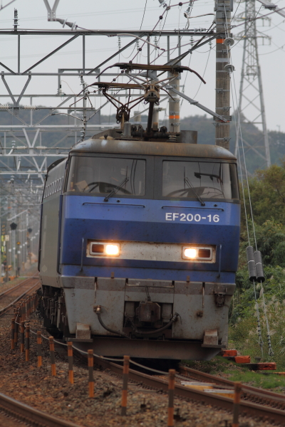 f0211615_19514861.jpg