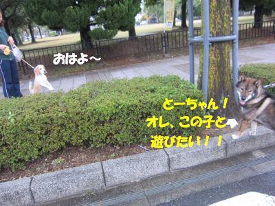 f0143123_13345450.jpg