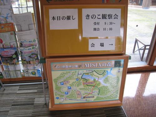 キノコ観察会~_e0121558_12202757.jpg