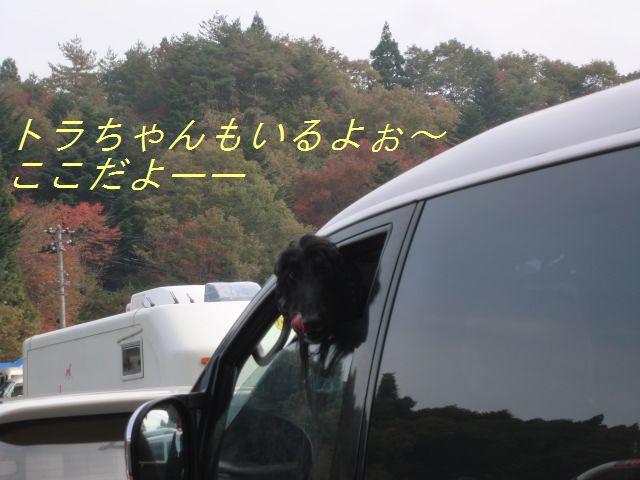 f0065568_19101574.jpg