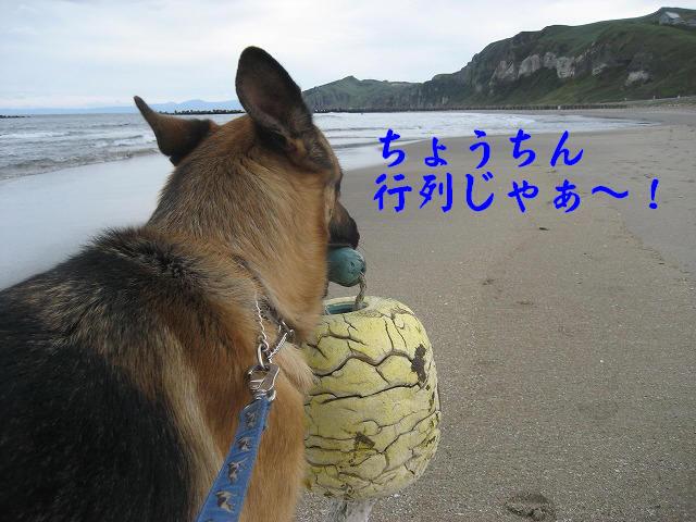 f0146769_22404236.jpg