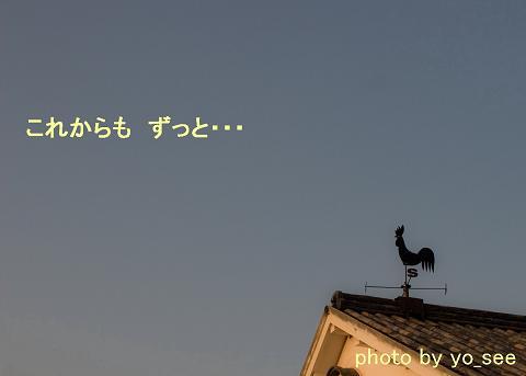b0185771_23424264.jpg