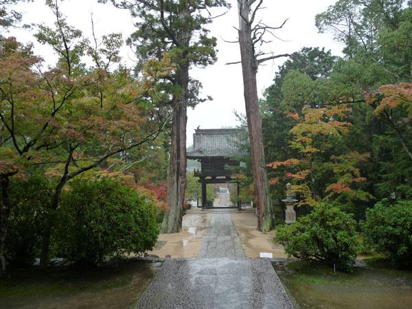 静かな雨の紅葉、宝福寺。_e0173183_23413123.jpg