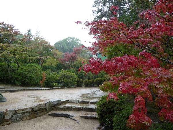静かな雨の紅葉、宝福寺。_e0173183_23414388.jpg