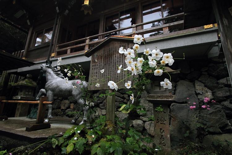 貴船神社_e0051888_2211570.jpg
