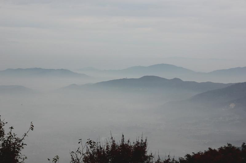 筑波山③ 自然研究路_a0127090_1230567.jpg