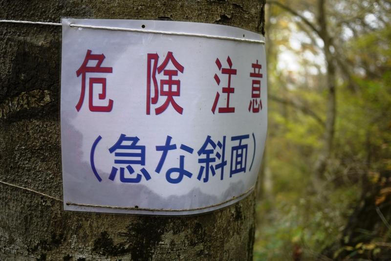 筑波山③ 自然研究路_a0127090_12524831.jpg