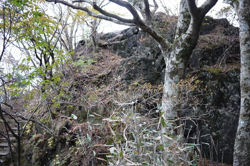 筑波山③ 自然研究路_a0127090_131331.jpg