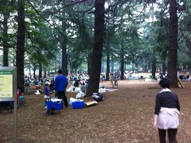 野川公園_f0236990_2213614.jpg