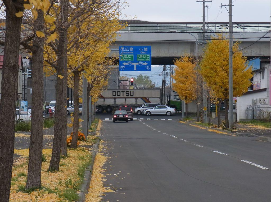 秋の通勤路_c0025115_20375011.jpg