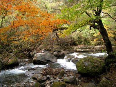 八ヶ岳山麓のパワースポット(とっておきの場所)_e0010418_847574.jpg