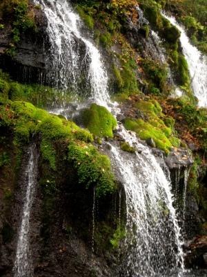 八ヶ岳山麓のパワースポット(とっておきの場所)_e0010418_848912.jpg