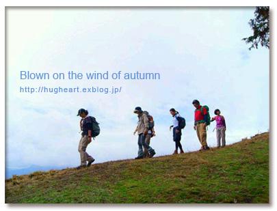 空気が澄んで気持ちいい  〜秋も野山へ繰り出そう~_f0086825_21523531.jpg