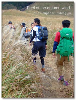 空気が澄んで気持ちいい  〜秋も野山へ繰り出そう~_f0086825_21533968.jpg