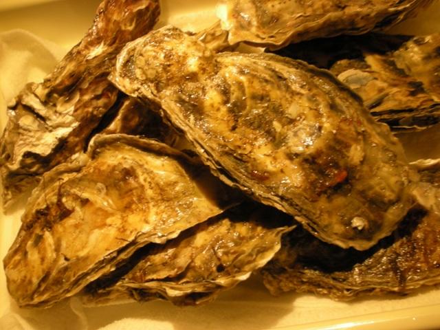 厚岸産牡蠣入荷です。_f0186927_19135763.jpg
