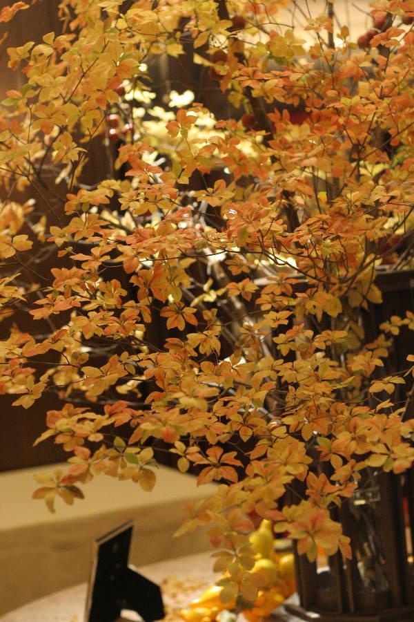 シェ松尾青山サロン様の装花 紅葉と、赤でかわいく_a0042928_18554895.jpg