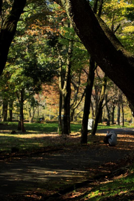 #1135 樹木公園_b0177233_5392023.jpg