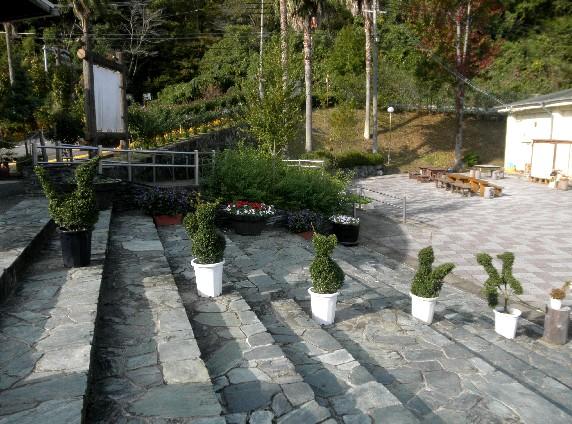 和歌山県植物公園緑花センター _b0093754_23301872.jpg