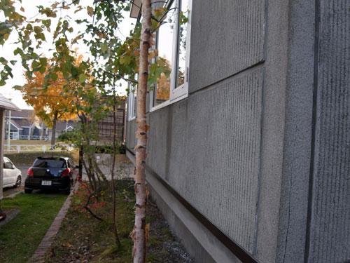いえのえほん40/平岡K邸改修実施_c0189970_13532375.jpg