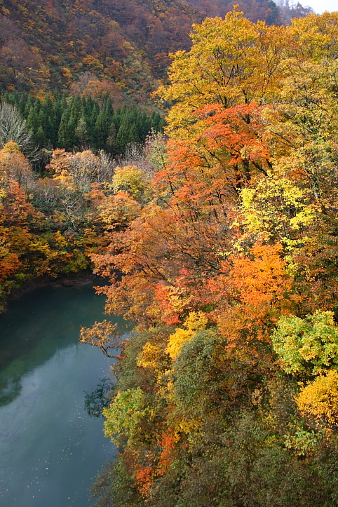 新潟 胎内渓谷の紅葉 その2_e0165983_10593019.jpg