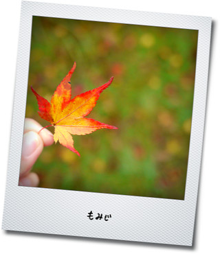 f0189385_23284877.jpg