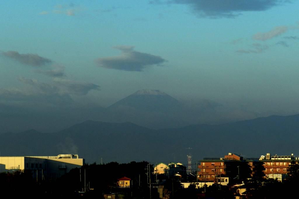 トウネン/冠雪の富士山/季節外れの花_b0024798_1044623.jpg