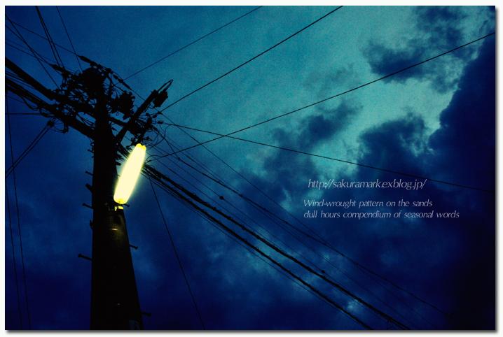 雨前の夕刻。_f0235723_19171969.jpg