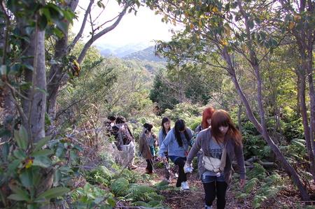 岬高校第1学年植樹サポート in 孝子の森_c0108460_18125493.jpg