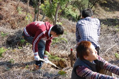 岬高校第1学年植樹サポート in 孝子の森_c0108460_1818151.jpg