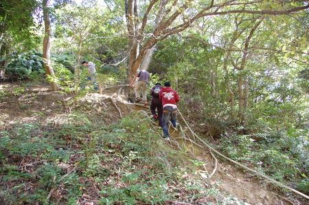 岬高校第1学年植樹サポート in 孝子の森_c0108460_1823364.jpg