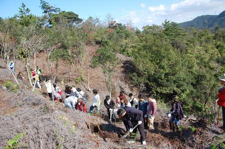 岬高校第1学年植樹サポート in 孝子の森_c0108460_18253318.jpg