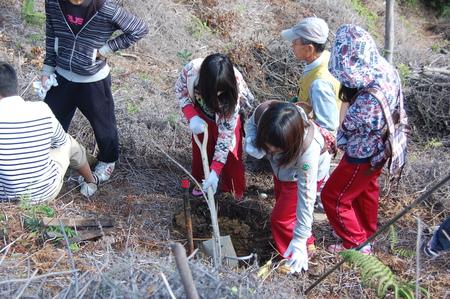 岬高校第1学年植樹サポート in 孝子の森_c0108460_182989.jpg