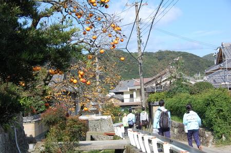 岬高校第1学年植樹サポート in 孝子の森_c0108460_1841421.jpg