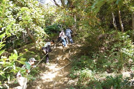 岬高校第1学年植樹サポート in 孝子の森_c0108460_1841939.jpg