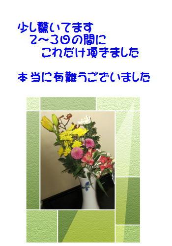 f0003174_1737377.jpg