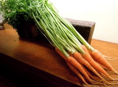 野菜_f0232994_8465822.jpg