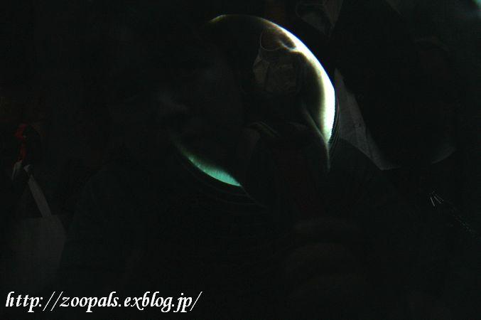 f0158697_2250617.jpg