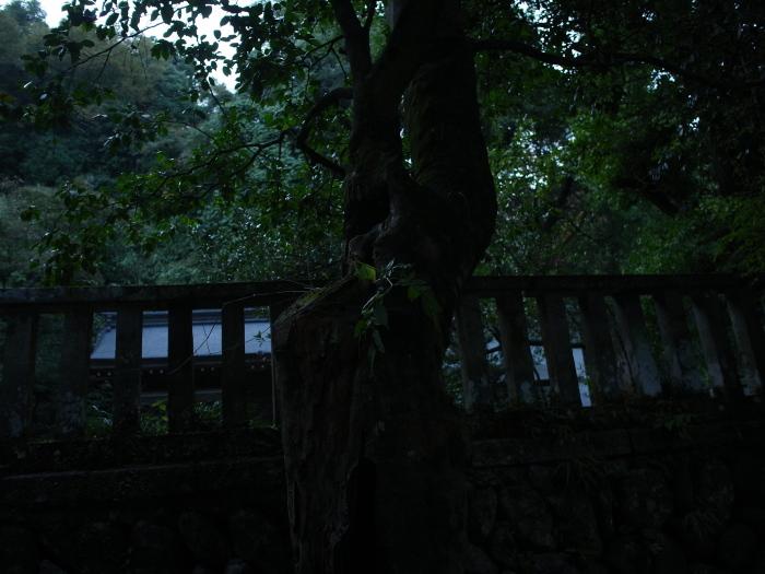 f0175998_034357.jpg